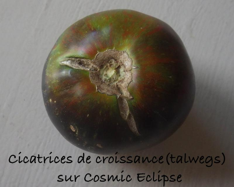 Cosmic Eclipse talwegs 4.8.2016.jpg