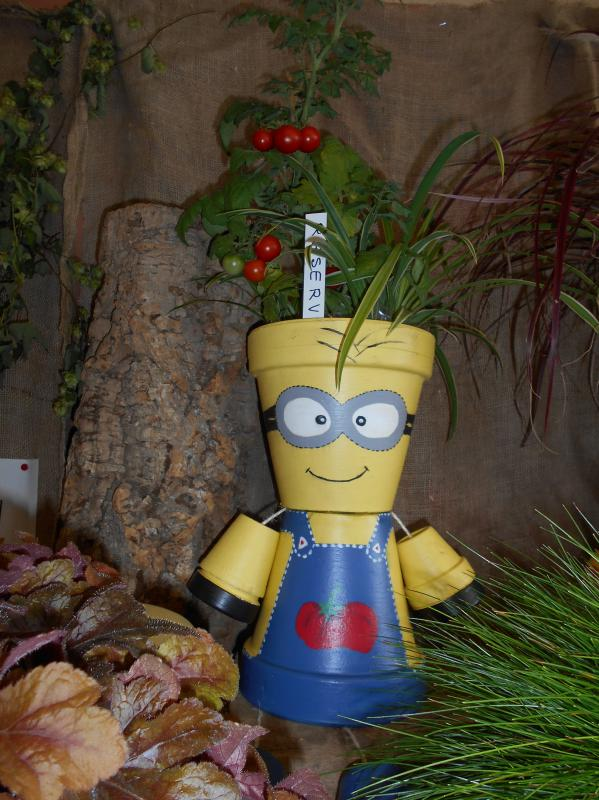 110916 entree salle Haversk minions2.JPG