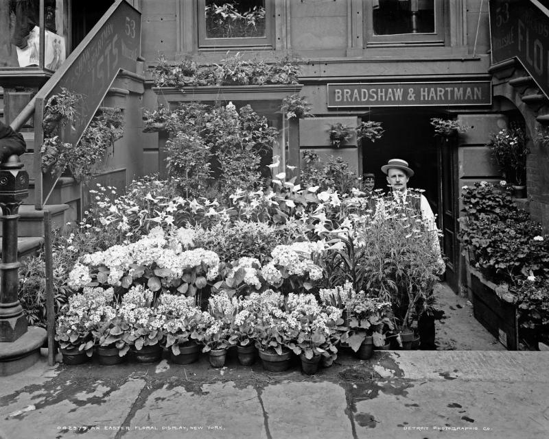 An Easter floral display, New York 1900 1905.jpg