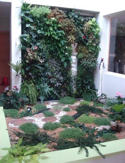 Mur v g tal pour l 39 ext rieur semences for Realiser un mur vegetal