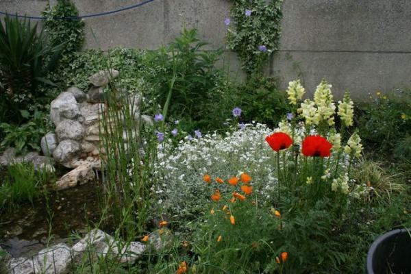 Jardin de plume 2014 semences for Au coin du jardin montville