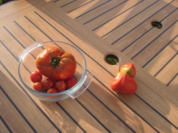 2007 mes petits pieds de tomates page 2 semences. Black Bedroom Furniture Sets. Home Design Ideas